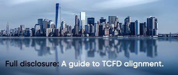TCFD Disclosure Guide 2020